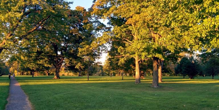 Cathcart-Park